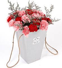 19支红粉混搭康乃馨
