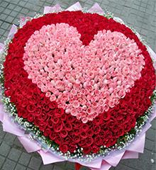 365朵玫瑰