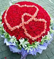 999朵玫瑰