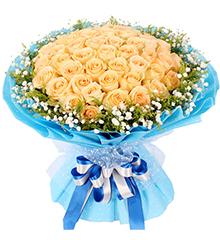 99朵香槟玫瑰,送女友、爱人、老婆