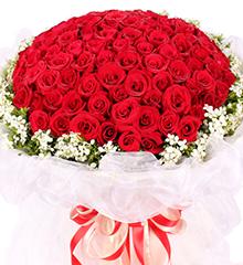 99支红玫瑰