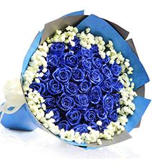 33支蓝玫瑰