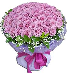 99支紫玫瑰