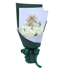 菁雪伊人:11枝白玫瑰,5英寸小熊1个,绿色配草