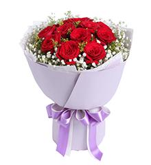 致美丽的你:11枝红玫瑰,黄莺、满天星适量