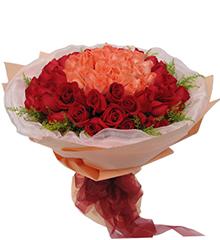 浪漫情人99朵玫瑰:33枝粉玫瑰居中,66枝红玫瑰围绕