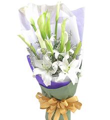 春韵:7枝白色马蹄莲,2枝白香水百合,情人草适量