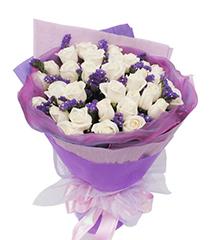 纯真之恋:33枝白玫瑰
