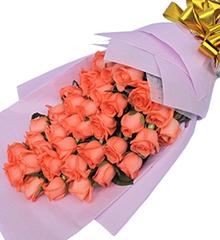 爱的呼唤:粉玫瑰33枝
