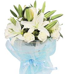 天使:多头白香水百合4枝,白玫瑰9枝