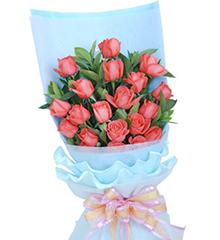 爱恋物语:20枝粉红色玫瑰