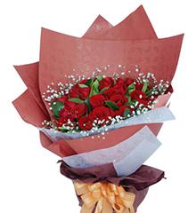 爱情港湾:33枝红玫瑰