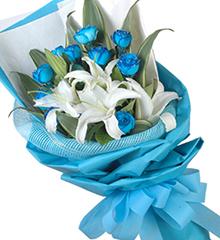 蓝色梦幻:11枝蓝色妖姬(昆明产),5朵白色的香水百合