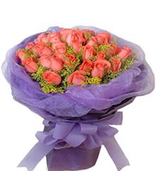爱的告白:33枝顶级粉玫瑰