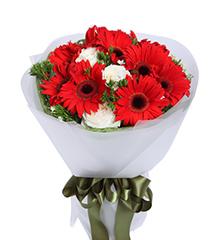 舞动青春:11枝红色太阳花,雪山白玫瑰3枝