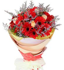 好心情:18枝红色太阳花(即扶郎),6枝香槟玫瑰