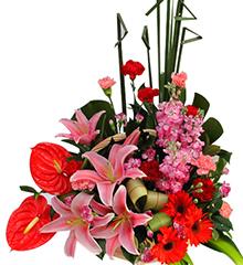 欣欣向荣:红掌、多头粉香水百合、红太阳花、康乃馨等花材