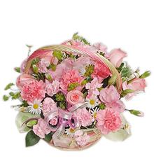 感谢妈咪:玫瑰、康乃馨、太阳花等花材