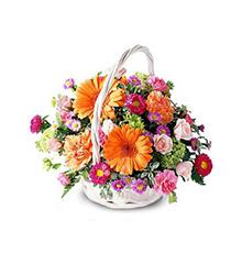 真情奉送:粉色玫瑰5枝,橙色太阳菊6枝,粉色,紫红色康乃馨各10枝