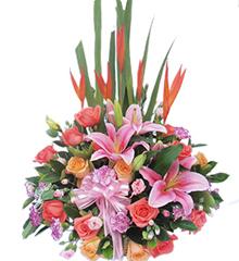 璀璨春光:小鸟5枝,多头粉香水百合2枝,5枝香槟玫瑰,10枝粉玫