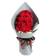 拥抱温暖的爱:29枝红康乃馨,2枝绿色桔梗