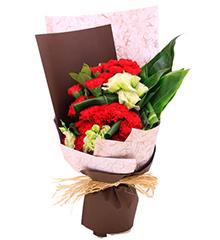 光阴的故事:红色康乃馨29枝,绿色洋桔梗、绿铁叶