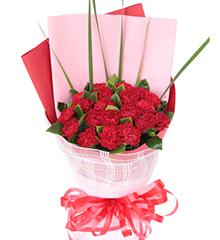 我爱您:20枝红康乃馨