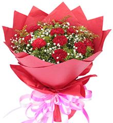 幸福花园:11枝红康乃馨