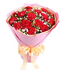 幸福典藏:16枝红康乃馨