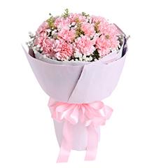 感恩密码:19枝粉康乃馨