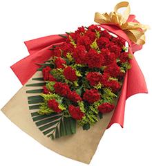 温情意:红色康乃馨33枝
