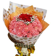 真心祝福:11枝红色康乃馨、55枝粉康乃馨、5寸小熊一只