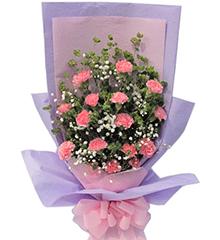 亲情问候:粉色康乃馨16枝