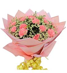 暖暖情意:粉色康乃馨22枝