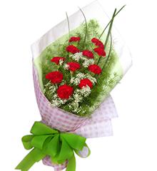 永远年轻:红色康乃馨12枝