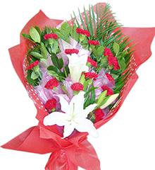 温暖:16枝红色康乃馨,1枝香水百合