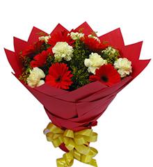 阳光灿烂:红色扶郎9枝,黄色康乃馨9枝