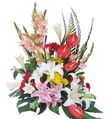 前程似锦:百合、粉剑兰、红掌、红玫瑰、扶郎等花材