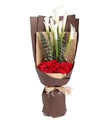漾恬假期:7枝白色马蹄莲,10枝红玫瑰,11枝红康乃馨
