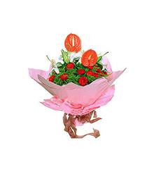 爱的源泉:多头香水百合2枝,红掌2枝,红色康乃馨20枝
