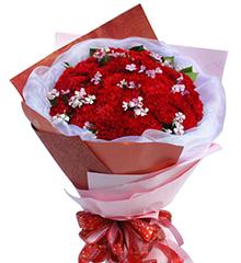 温暖怀抱:33枝红色康乃馨