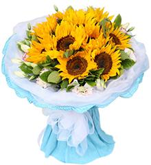 热情:10枝向日葵