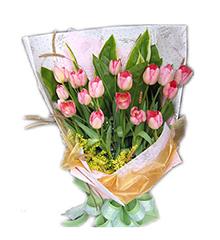 浪漫粉色郁金香:20枝粉色郁金香,黄莺、绿叶适量
