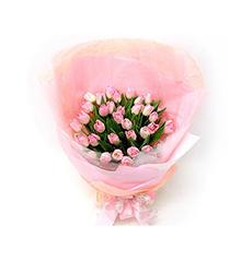 粉红丽人:33枝粉色郁金香花束