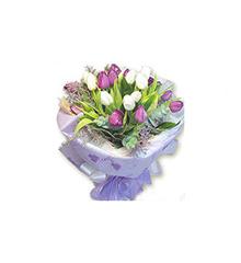 意难忘:紫郁金香10朵,白郁金香10朵