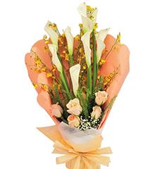 雅致风情:5枝香槟玫瑰,8枝白色马蹄莲