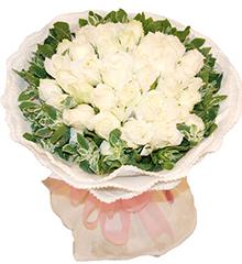因为爱情:33朵白玫瑰
