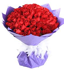 一生幸福:66朵红玫瑰
