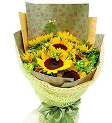 阳光灿烂:9枝向日葵