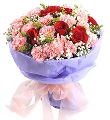 想念你:6支红玫瑰,12支粉色康乃馨